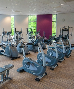 Gym at Elms Bank College